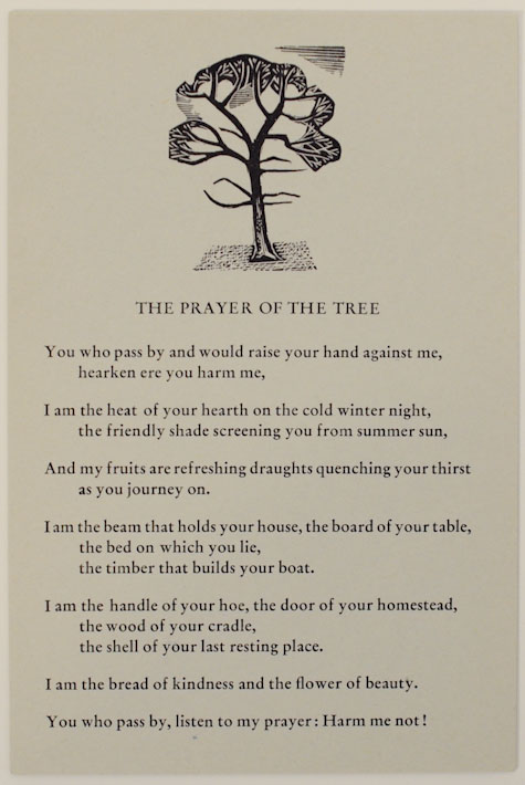 The Prayer of the Tree