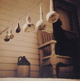 Birdhouses (Signed Limited Edition)