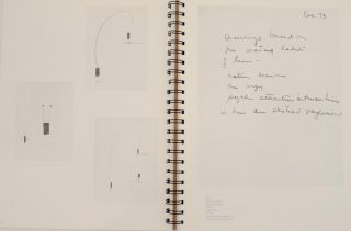 The Mating Habits of Lines: Sketchbooks and Notebooks of Ree Morton